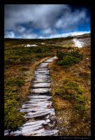 Path to Nowhere by colpewole