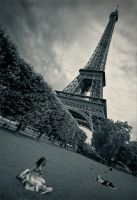 Tower by photoport