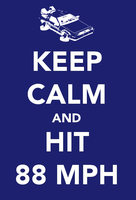 Keep Calm and Hit 88 MPH by chrisbrown55