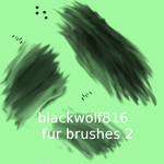 fur brushes2 by blackwolf816