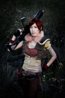 Borderlands - Lilth by evalime