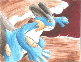 Swampert by darknight0x0