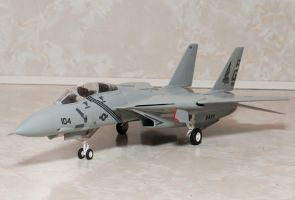 Hobby Crap F-14A Tomcat Finished 1 by AEisnor