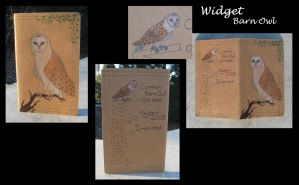 Raptor Club- Widget journal by Animus-Panthera