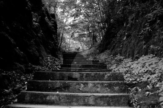 Indian Ladder Trail Steps by iheartmycamera