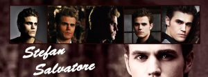 Stefan Salvatore Banner by dodo91085