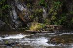 Fast flow by Tumana-stock