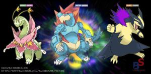 fake megaevolution- starter Johto by badafra