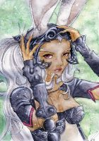 FFXII-Fran of the Strahl by Hyokenseisou