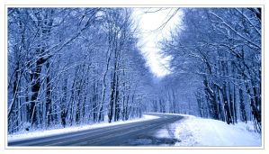 road through the winter forest by iuliii