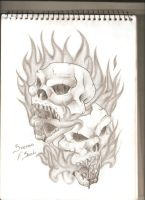 Skull Series 1 by stefano13