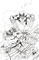 Wolverine and Elektra Pin Up Inks by RobertDanielRyan