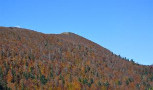 Autumn hill by marlene-stock