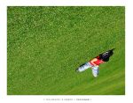 The Grass Is Green by taoge