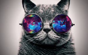 Wallpaper Galaxy cat by JhoannaEditions