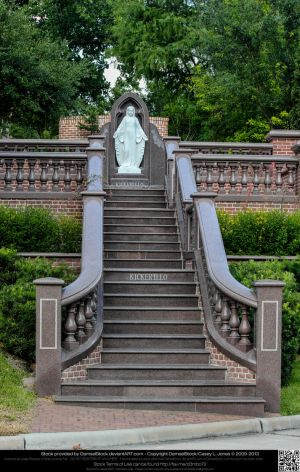 Virgin Mary Atop Marble Stairs by DamselStock