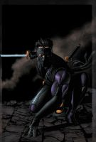 Ninjak01 by angryf