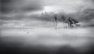 The Fog by Livelys