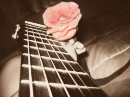 A Chord and A Rose 2 by TropicalGuitarrist