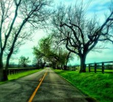 Lonely Road by Defyaugury
