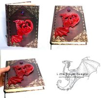 Dragon Book first attempt by LittleDragonDesigns