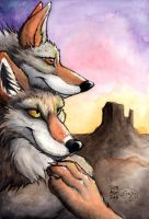 Coyotes at Sunset by sebastiangreyfox