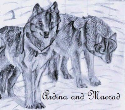 Maerad and Ardina as wolves by doctor-who-mad-gal