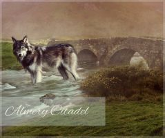Almery Citadel Alliance WP Borders by MooeyBandana