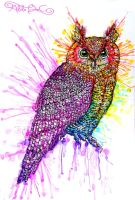 Hoot Hoot Colours by AlulaDreamsArt