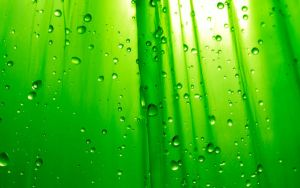Green Droplets by discoverist