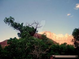 Zion National Park by mudhead1