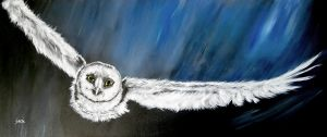 Night Owl by dx