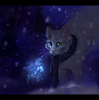Winter enigma by Ali-zarina