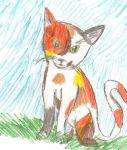 Request. Calico cat. by Whispersong22