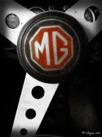 MG by wroquephotography