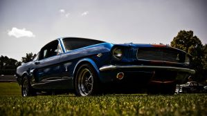 Blue Mustang by PapaGue