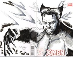 Wolverine cover sketch by vengaza