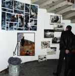 Project Pigeon @ exhibition by AnnaNicola