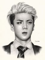 SEHUN by DENITSED