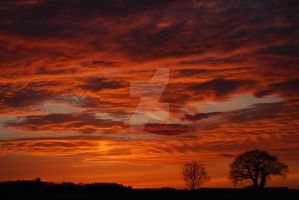 Sky On Fire by twilliamsphotography