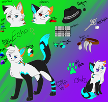 Echo ref sheet new by NekoMangaka