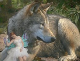 Wolf and Pixie Tales - Closeup by M-I-R-I-E-L