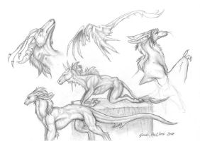 Sketches by zarathus