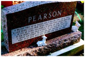 Pearson by SLJones-photo