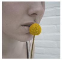 Yellow by Fractal-Flux