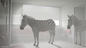 Zebras 3D by dspcreativity