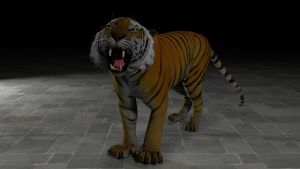 The tiger by Hiddenus