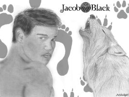 Jacob Black by Aeidailgirl