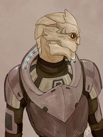 ME: Turian Lady by Vaahlkult