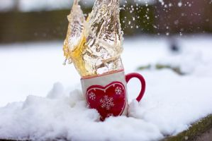 Love winter by Pamba